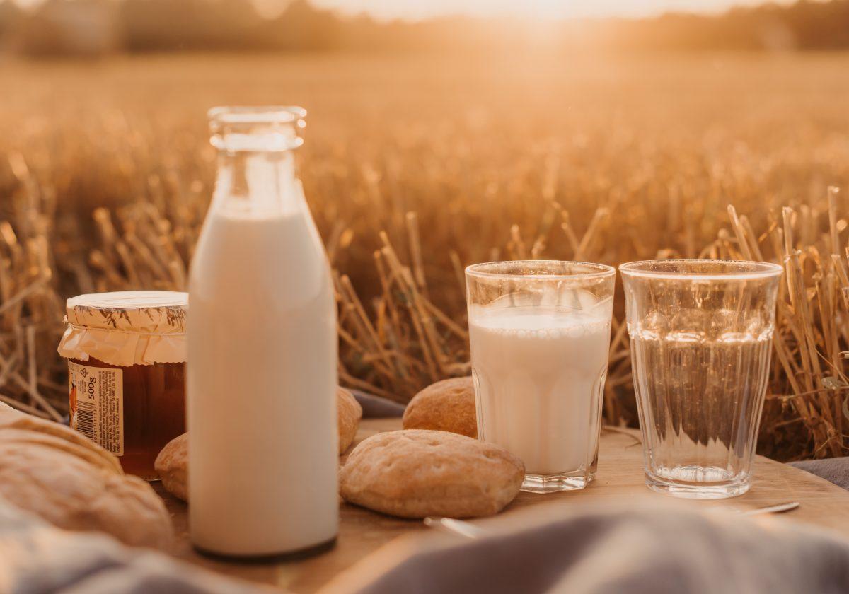 Bebidas vegetais – uma boa alternativa ao leite?